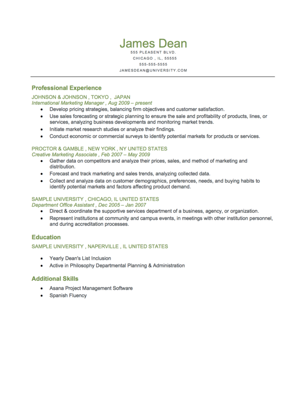 professional chronological resume template .